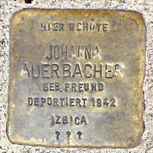 http://www.juden-in-weinheim.de/bilder/stolpersteine/auerbacher-johanna-stolperstein.jpg